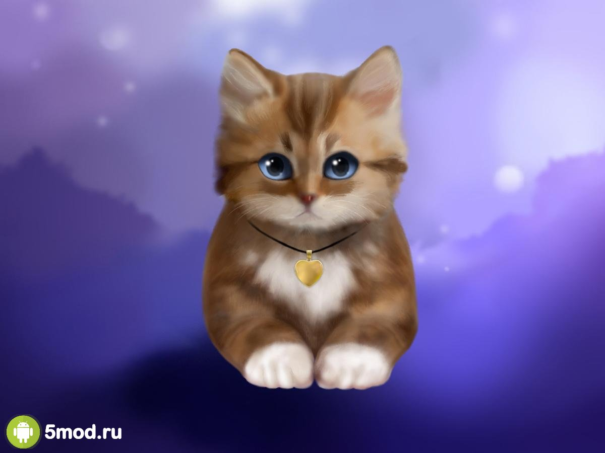 Toffee Cute Kitty Live Wallpaper Mod APK 2021 para Android ...