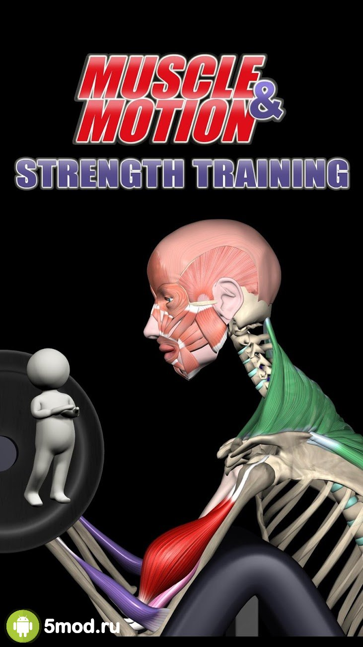 Strength Training by Muscle & amp; Motion