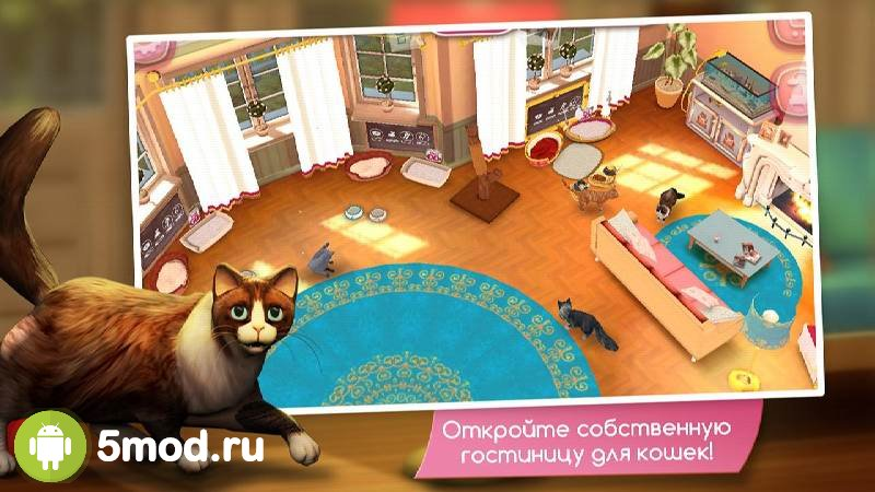 CatHotel - Hotel for cute cats