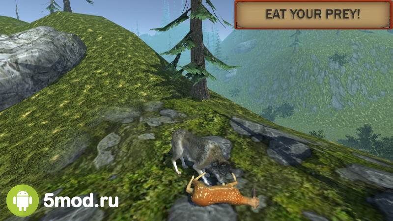 Wolf simulator evolution