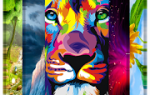 1,000,000 Wallpapers HD 4k (Best Theme App) Mod APK 2021 for Android – new version