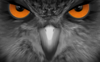 EagleEyes (Plus) Mod APK 2020 for Android – new version