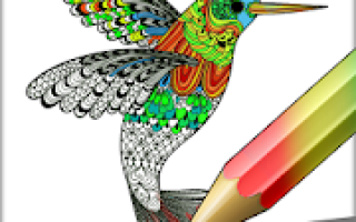 Coloring Mod APK 2021 for Android – new version