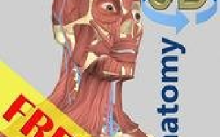 3D Anatomy Mod APK 2020 for Android – new version