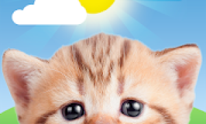 Weather Kitty – Forecast, Radar & Cat Pictures Mod APK 2021 for Android – new version
