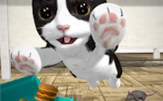 Cat Simulator – and friends Mod APK 2020 for Android – new version