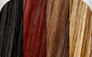 Hair Color Studio Mod APK 2021 for Android – new version