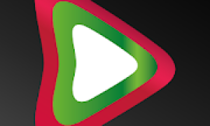 BUL Player – Video and Livestream Player Mod APK 2021 for Android – new version
