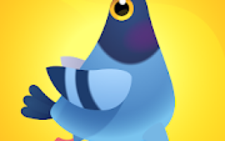 Pigeon Pop Mod APK 2020 for Android – new version